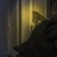 Dépannage serrure à Lyon - Axxess Fermetures